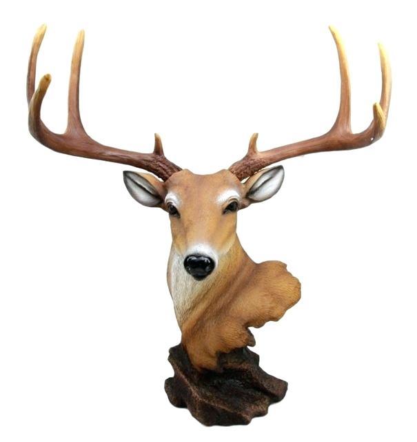 605x640 Buck Deer Drawing Fine Art Print Head Clipart
