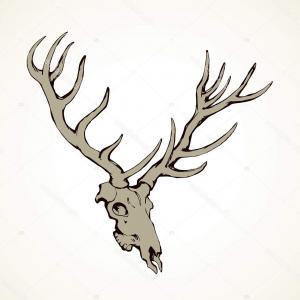 300x300 Hd Vector Buck Deer Vector Design Studiogrfx