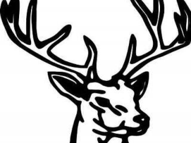 640x480 Huge Collection Of 'buck Deer Clipart' Download More Than