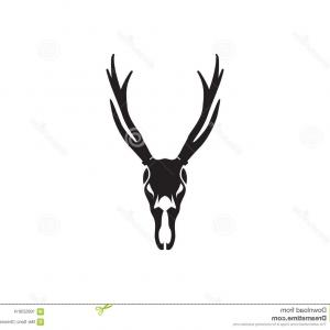 300x300 Miadbmbadeer Skull Art Download Buck Head Line Drawing Soidergi