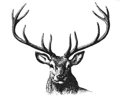410x347 Dream Buck! Mark Still Stays Alive In Me Deer Stencil, Deer