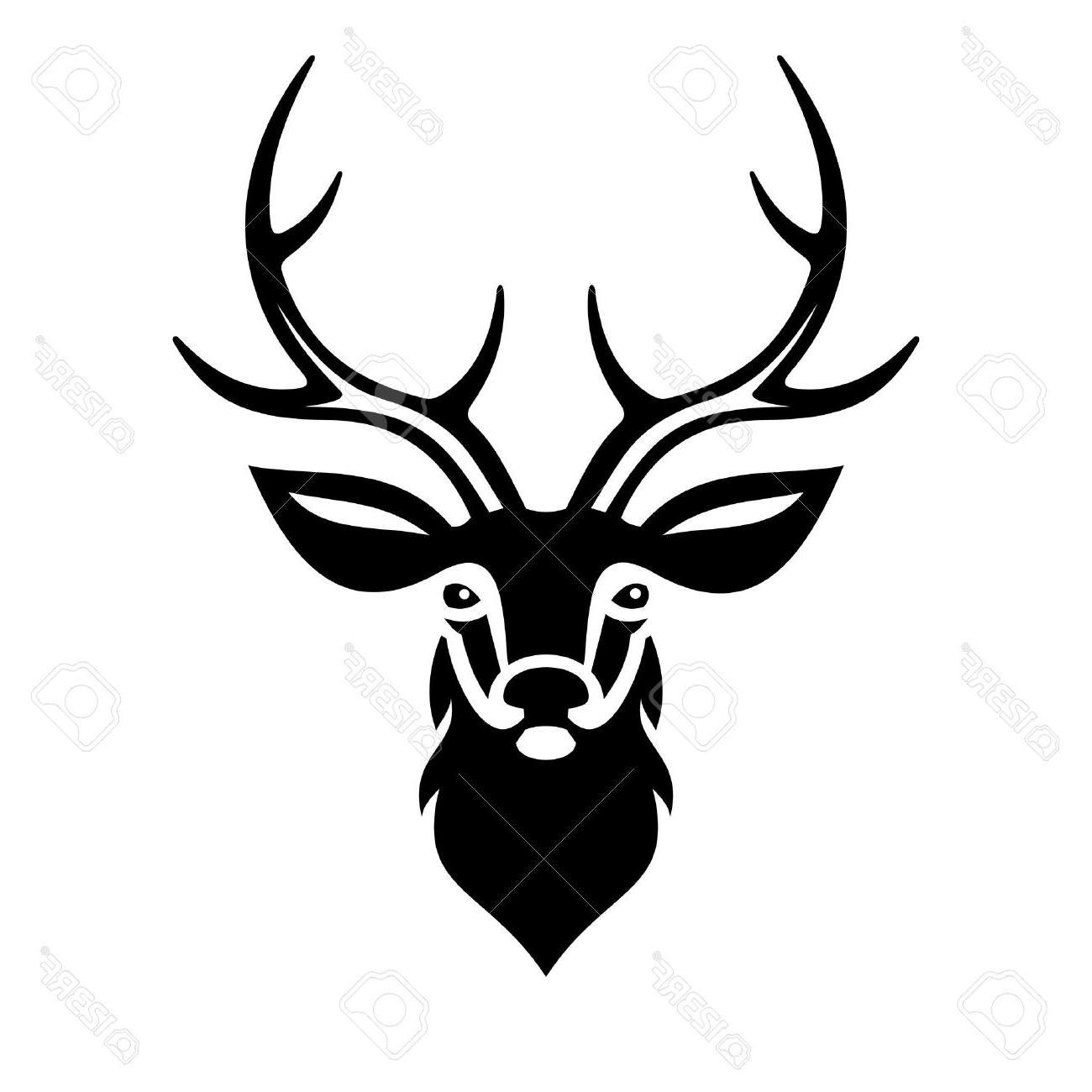 1300x1300 Best Hd Deer Buck Drawings Vector Pictures Free Vector Art