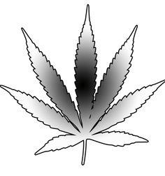 Bud Leaf Drawing