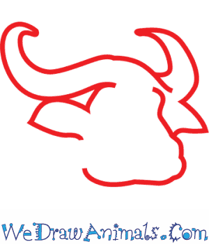 300x350 How To Draw An African Buffalo