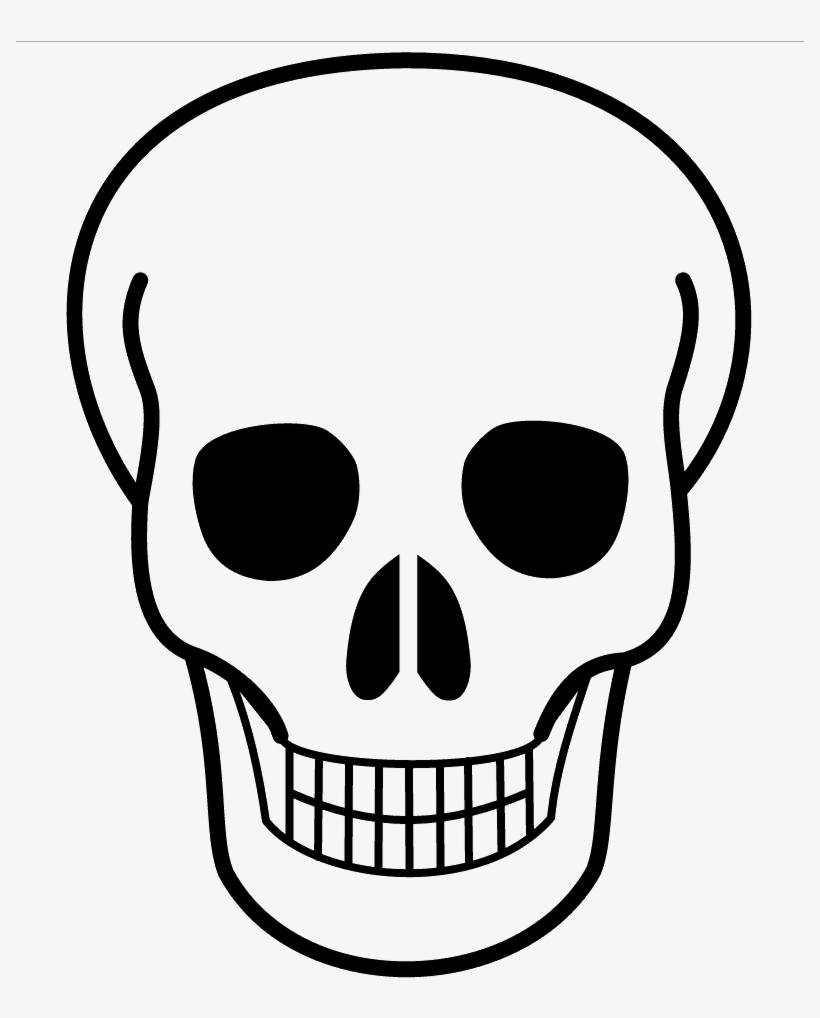 Buffalo Skull Drawing