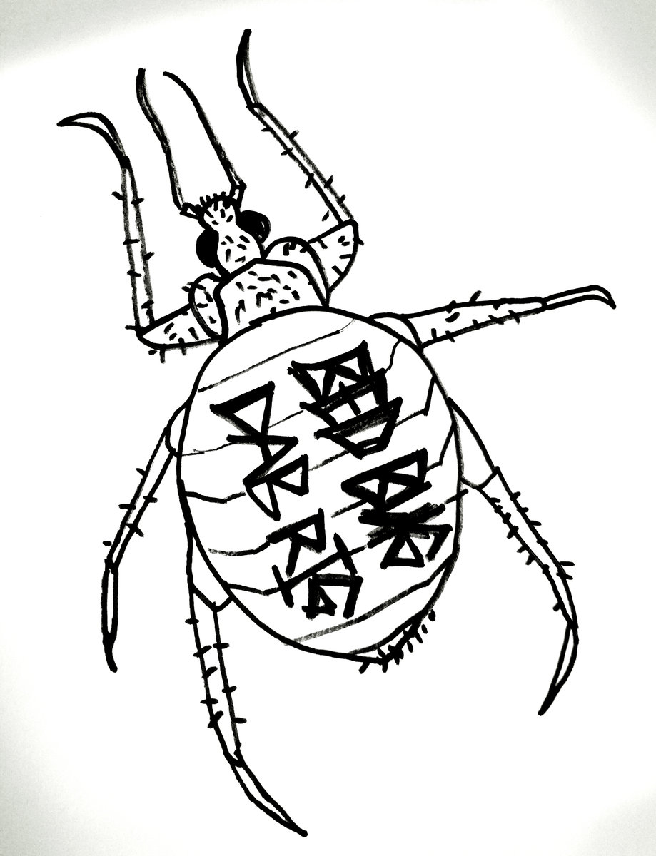 919x1200 bug drawing bed bug for free download