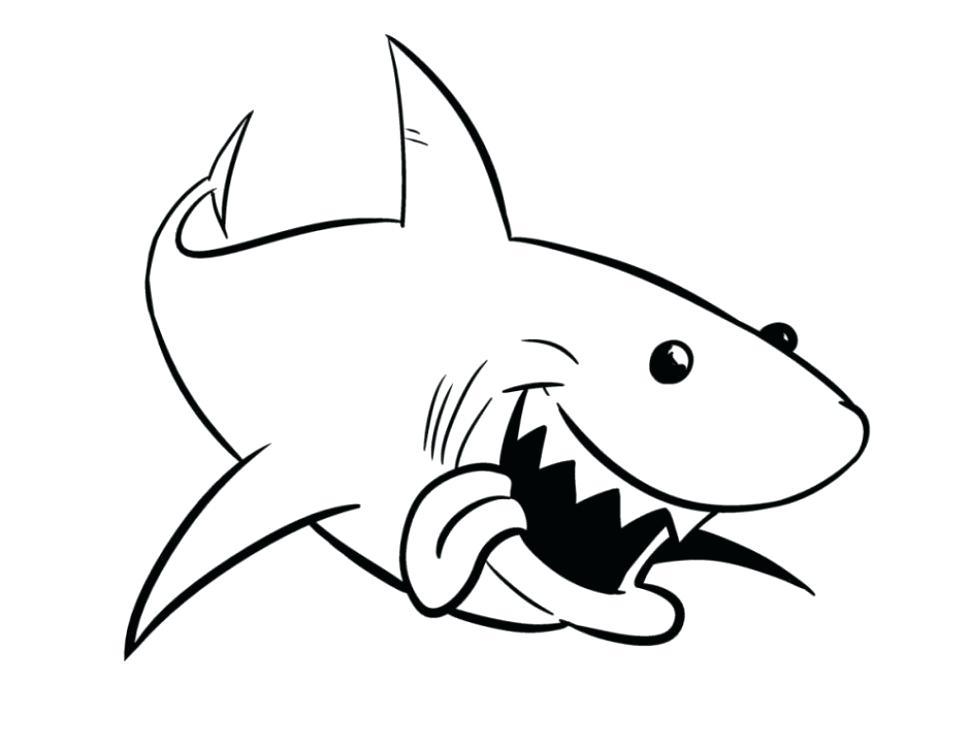 970x749 bull shark drawing bull shark drawing at bull shark line drawing