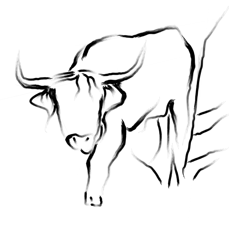 750x750 Bull Drawing Black And White Cattle Line Art Cc0