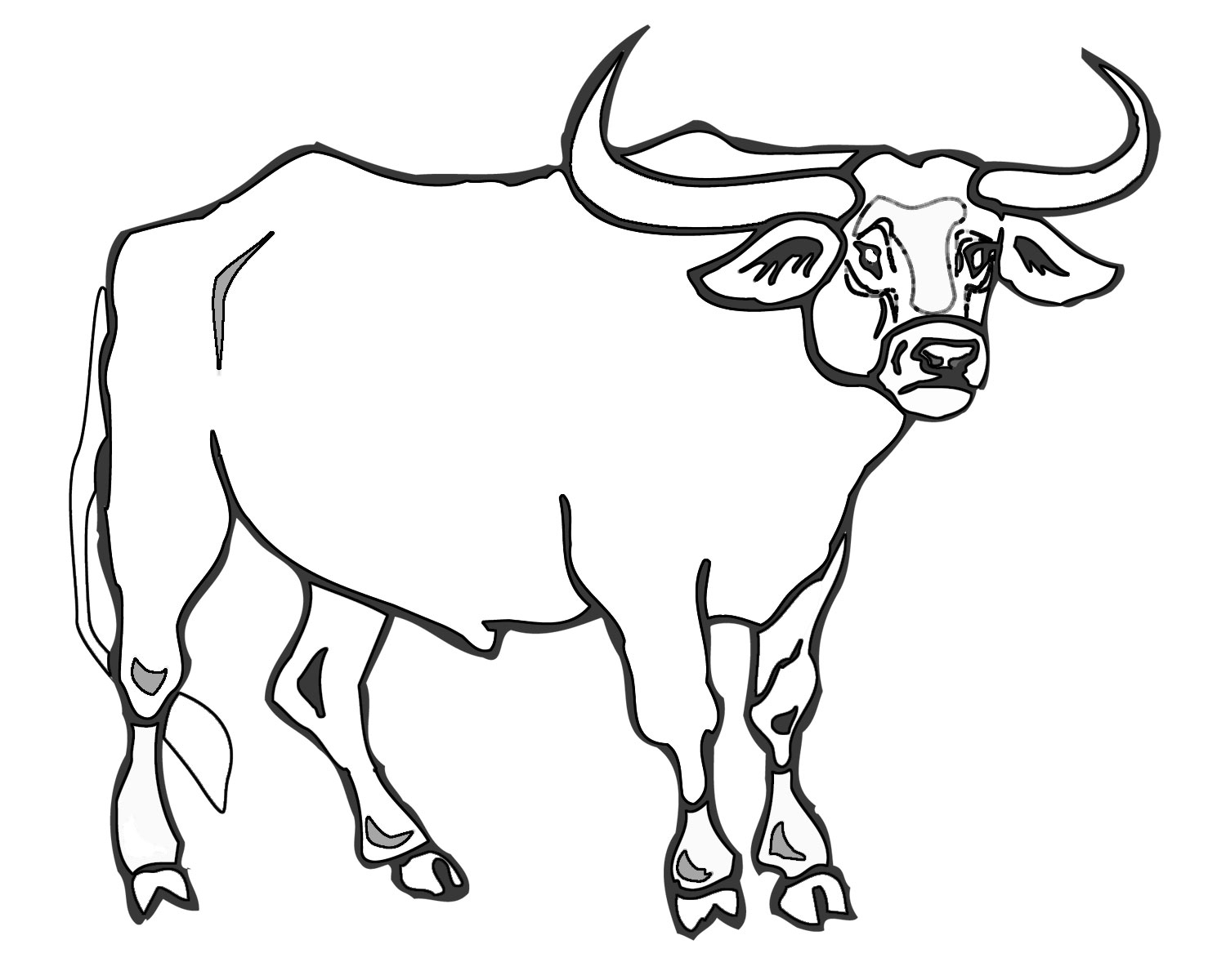 1500x1200 bull drawing for kids and bull drawing for kids bull drawing