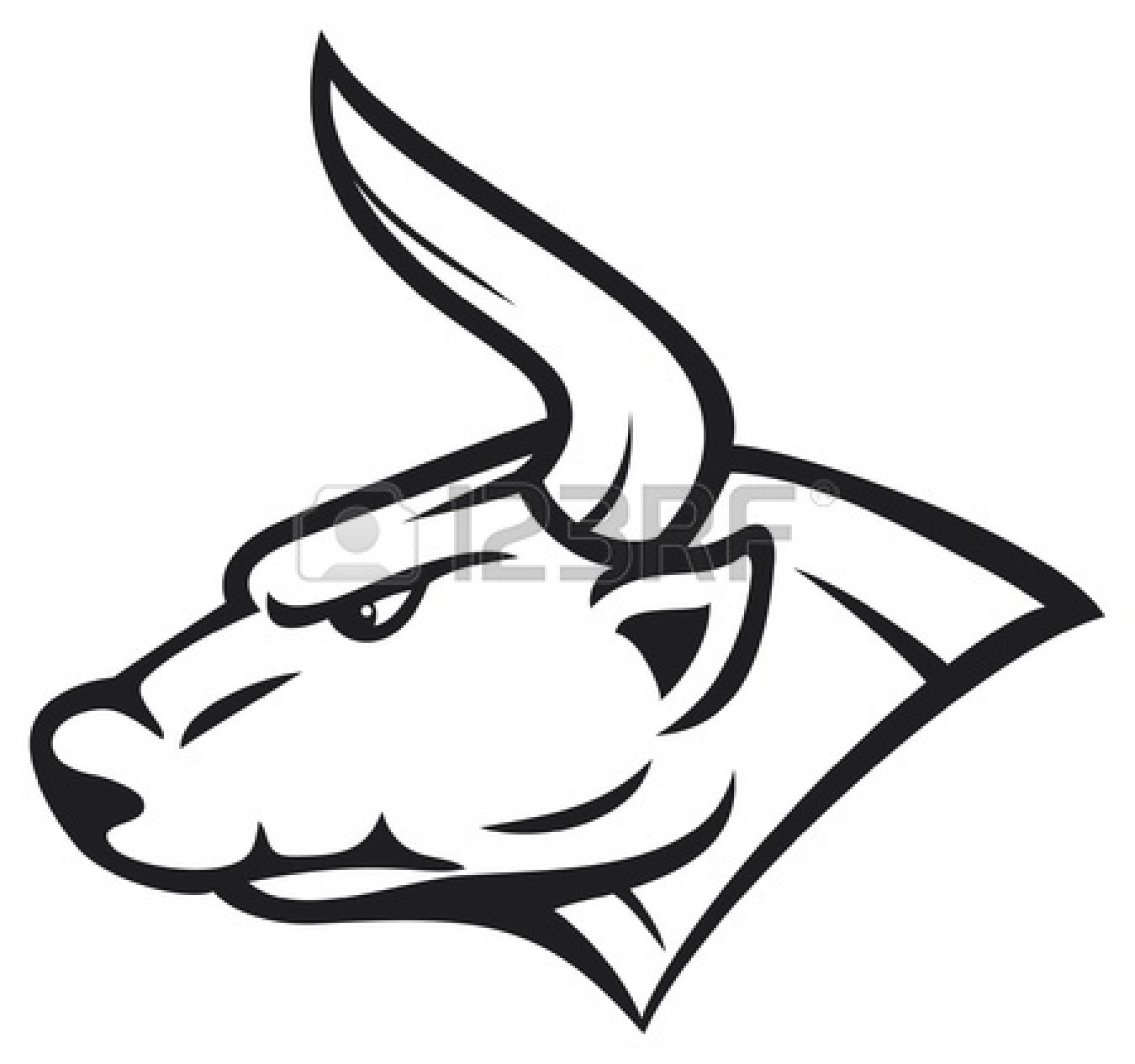 Bull Head Drawing