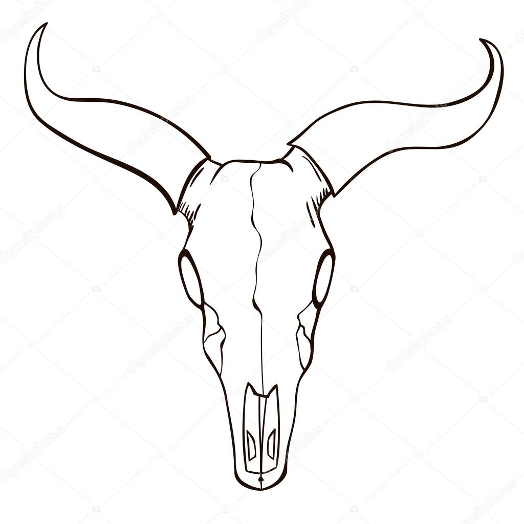 1024x1024 Bull Drawing Skeleton For Free Download