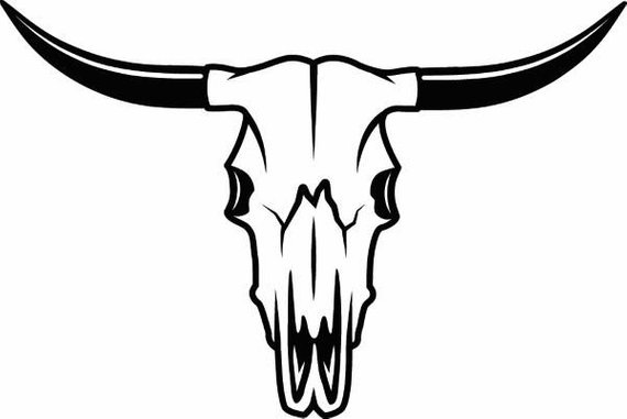 570x381 Bull Skull Skeleton Bones Horns Cowboy Country Western Cow Etsy