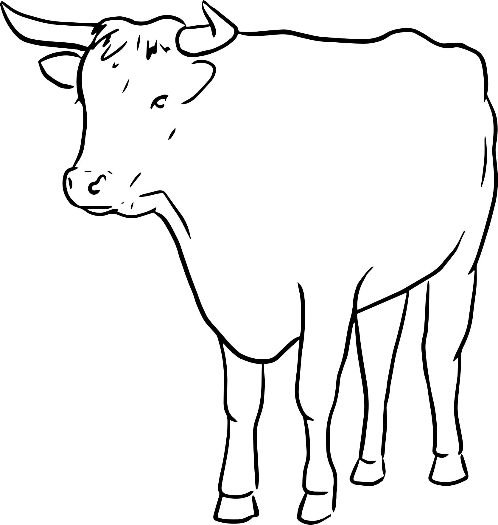 1672x1761 Bull Line Drawing Icons Png