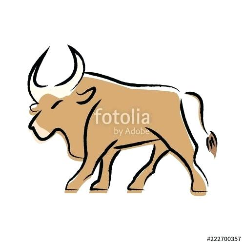 500x500 How To Draw A Bull