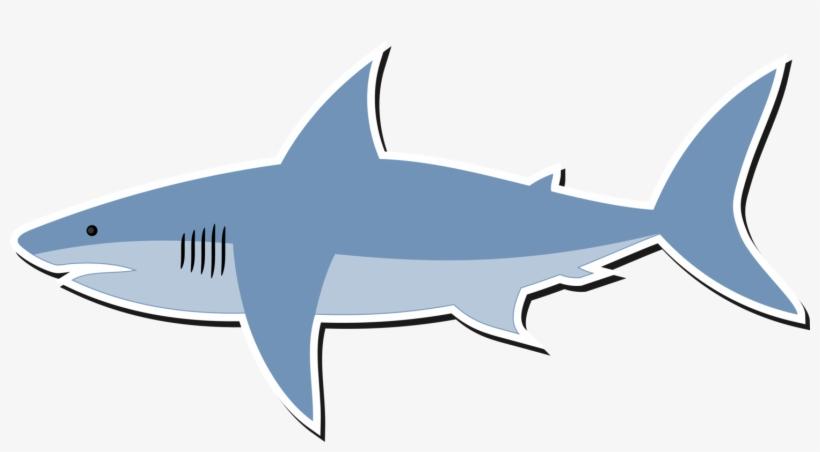 820x452 great white shark bull shark shark finning lemon shark