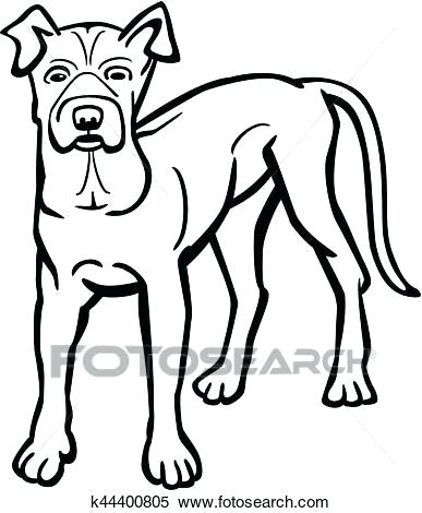387x470 drawings of pit bulls dog breeds the pit bull terrier white color