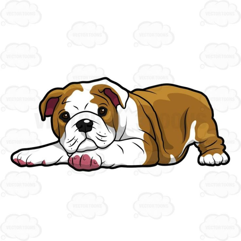 1024x1024 Pictures Of Cartoon Bulldogs Monkey Clipart House Clipart Online