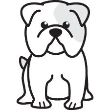 Bulldog Drawing Easy