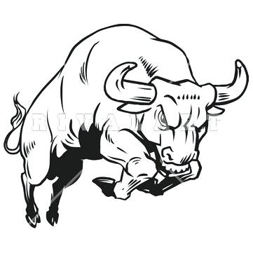 361x361 Drawing Of A Bull Charging Bull Drawing Bulldog Drawing Outline