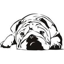225x225 English Bulldog Clipart Drawing