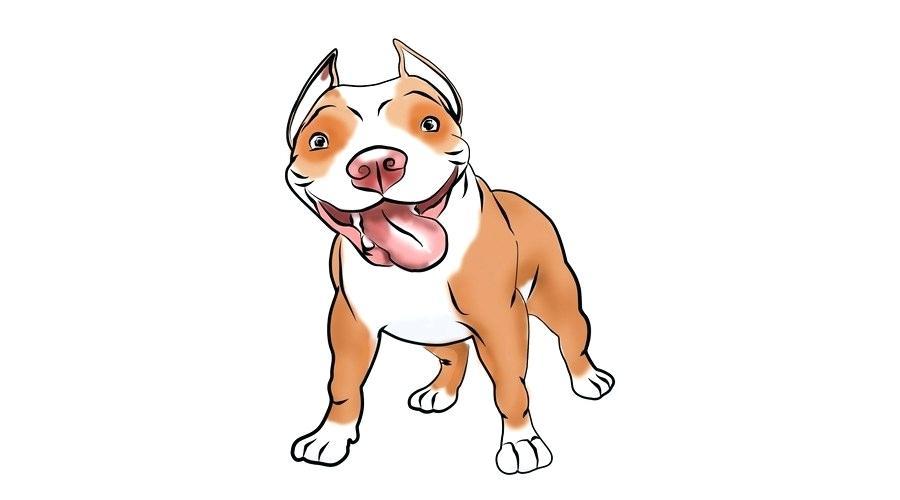 900x500 Bull Dog Drawing Bulldog Bulldog Drawing Cute