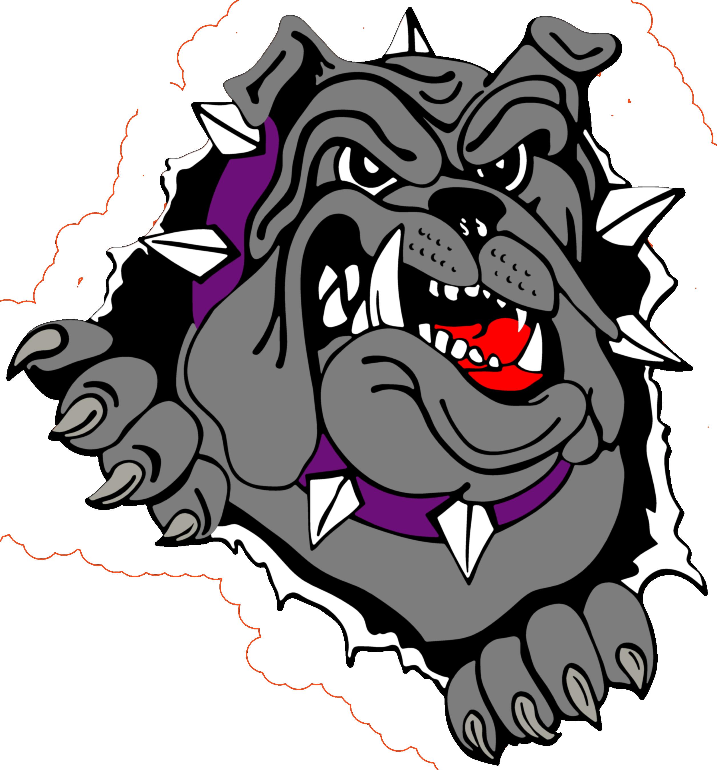 2513x2700 does the bulldog with the bulldog logo bulldog tattoo, art