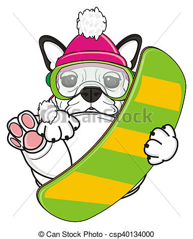 380x470 white french bulldog puppy french bulldog hold a snowboard