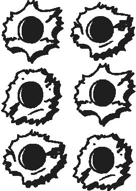 270x380 bullet holes, vinyl cut