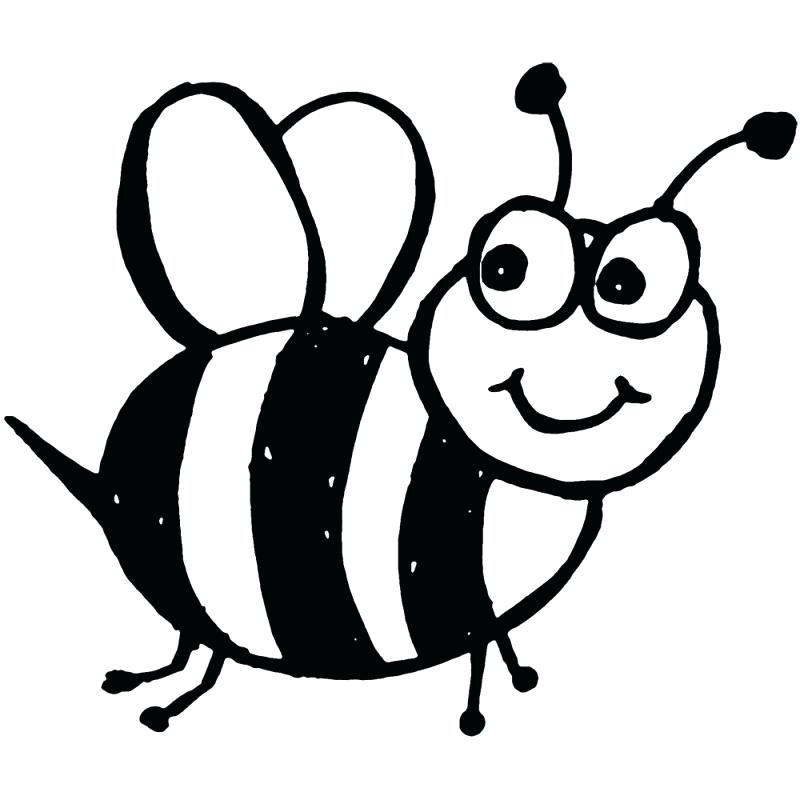 800x800 how to draw a bumble bee bumble bee drawing gallery bumble bee