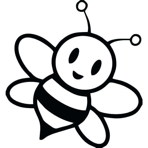 600x600 how to draw a bumble bee bumble bee drawing gallery bumble bee