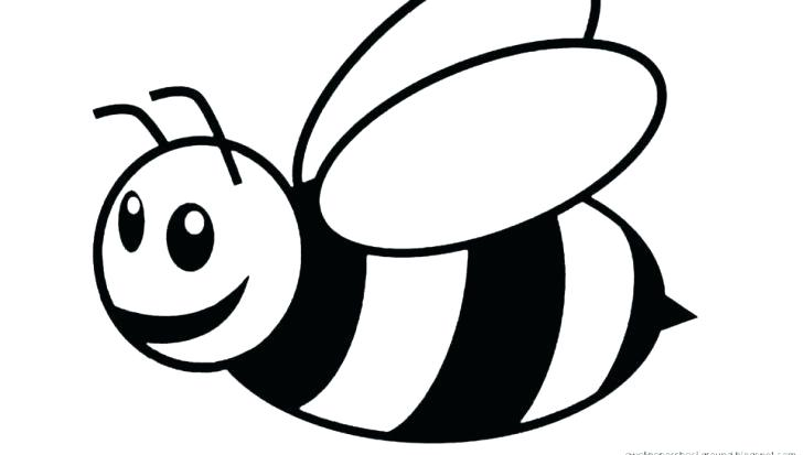 728x413 how to draw a bumblebee medium size of bumblebee colouring sheet