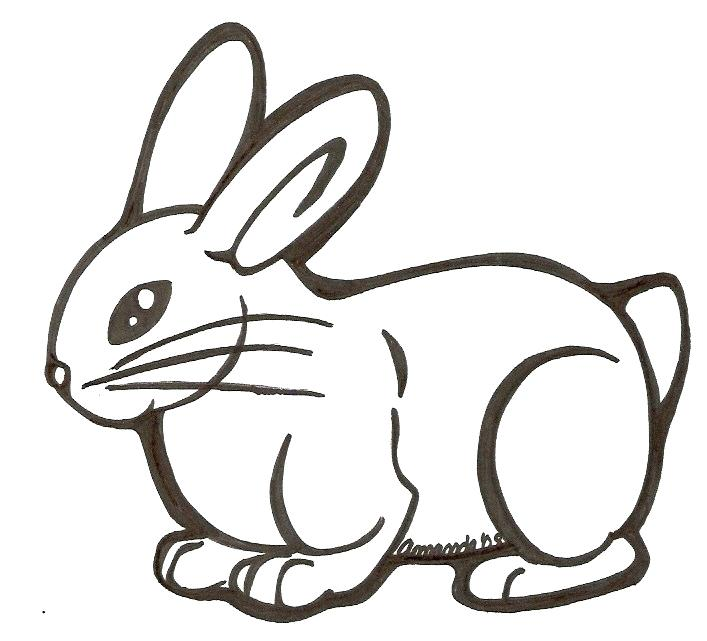707x641 easy bunny drawings cute bunny drawing cute bunny