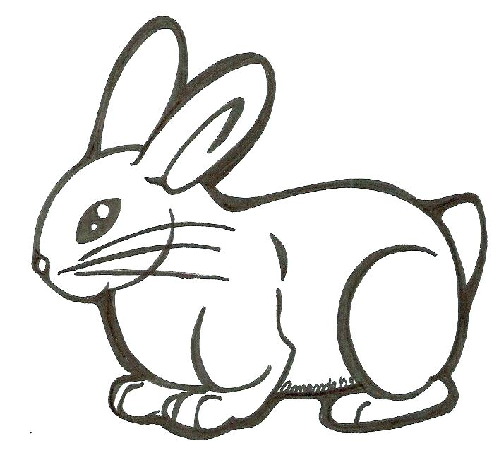 707x641 easy to draw bunny rabbit draw bunny ears how to draw bunny