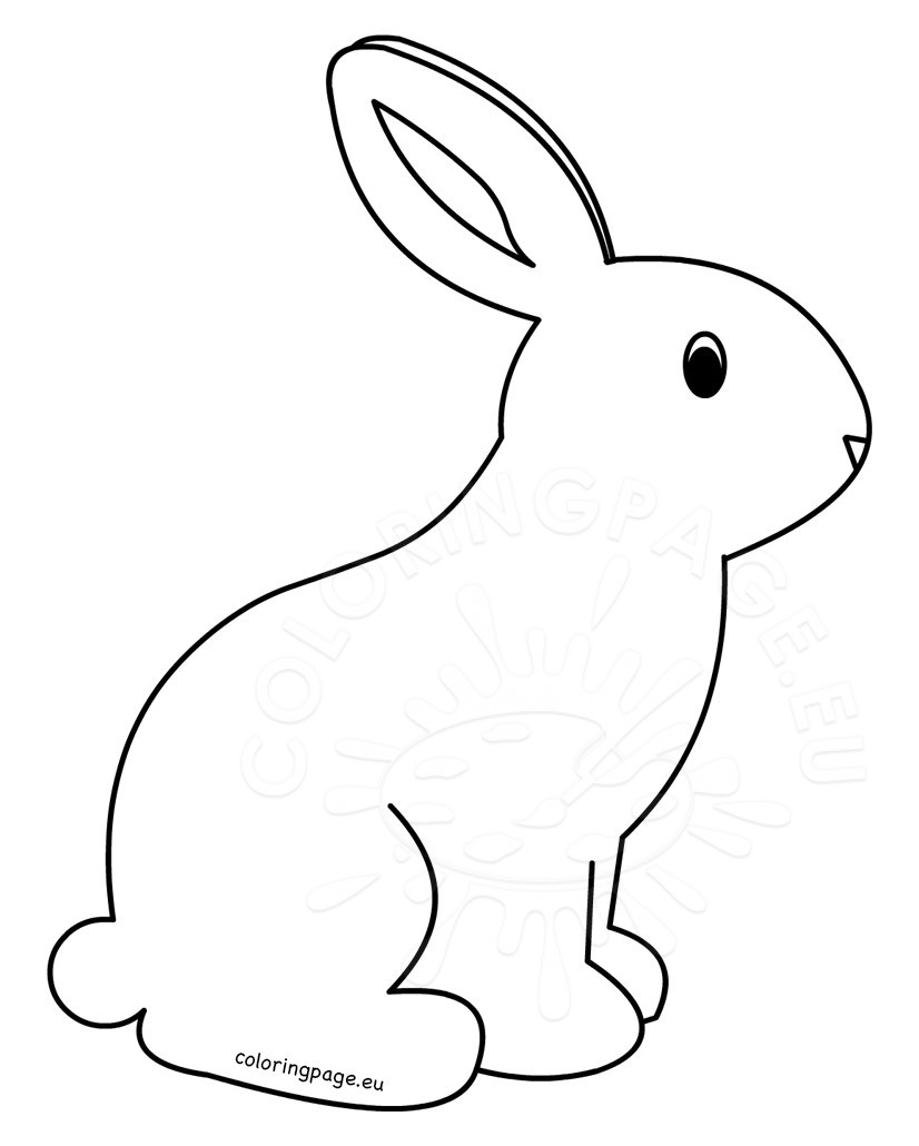 Bunny Drawing For Kids