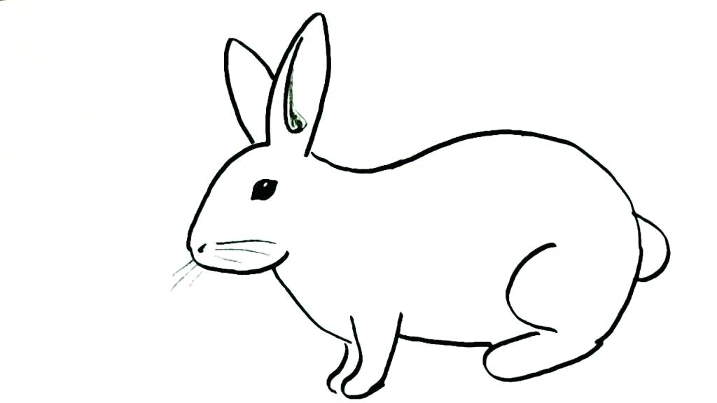 1024x576 easy to draw bunny bunny easy to draw perfect simple bunny drawing