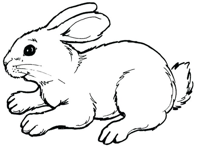 650x488 outline of a bunny outline of a bunny outline bunny tattoo