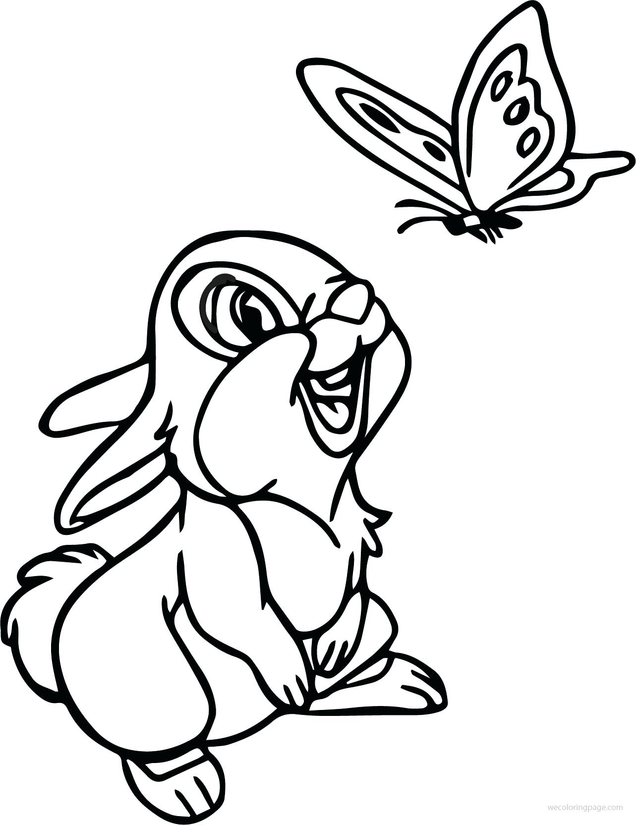 butterfly cartoon drawing  free download on clipartmag