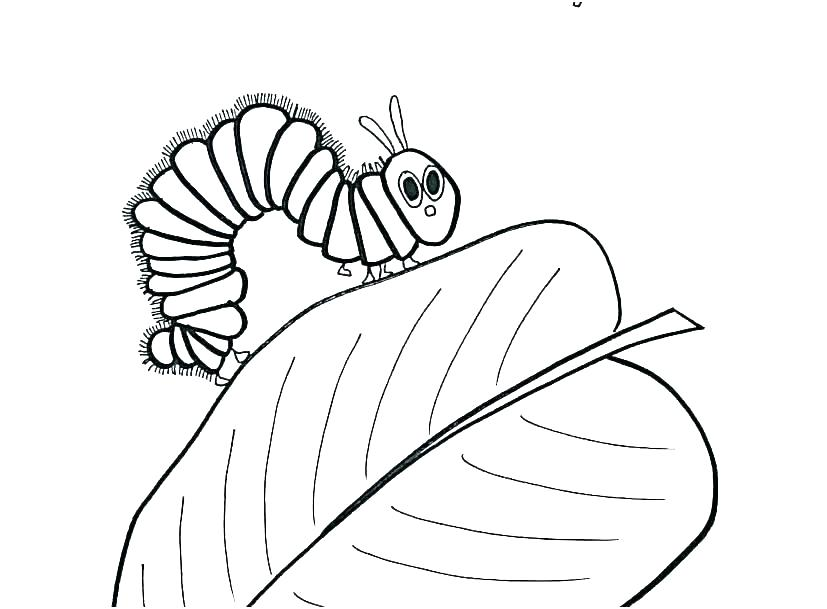 827x609 the very hungry caterpillar coloring pages very hungry caterpillar