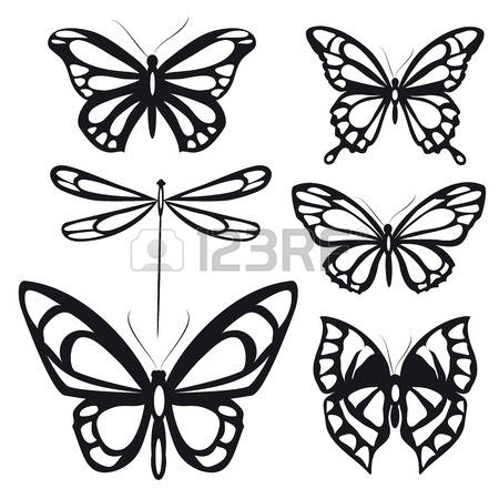 450x450 Butterfly Lifecycle Drawing Clipart Collection