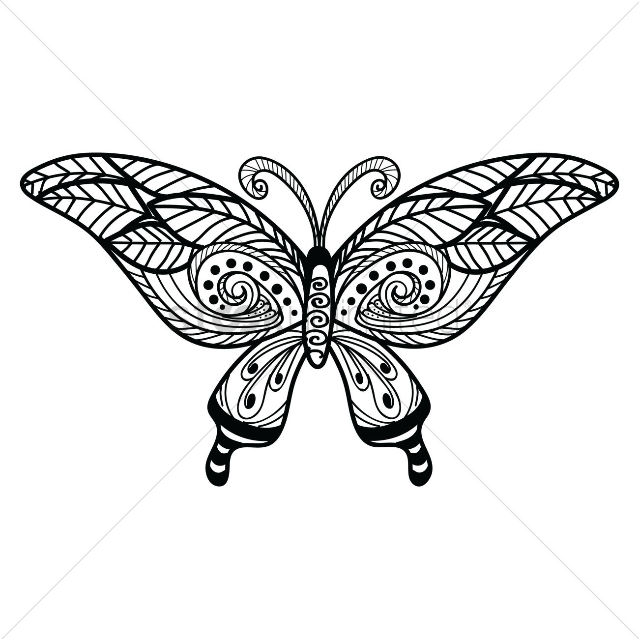 1300x1300 Decorative Butterfly Design Vector Image
