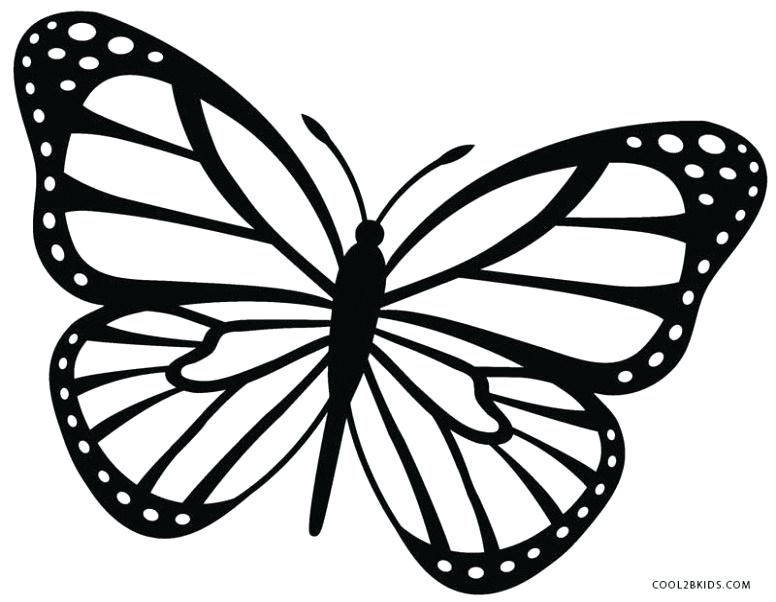 776x602 Drawings Butterflies Collection Of Drawings Butterfly For Your