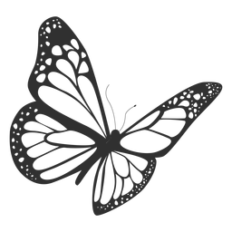 256x256 Isolated Butterfly Drawing