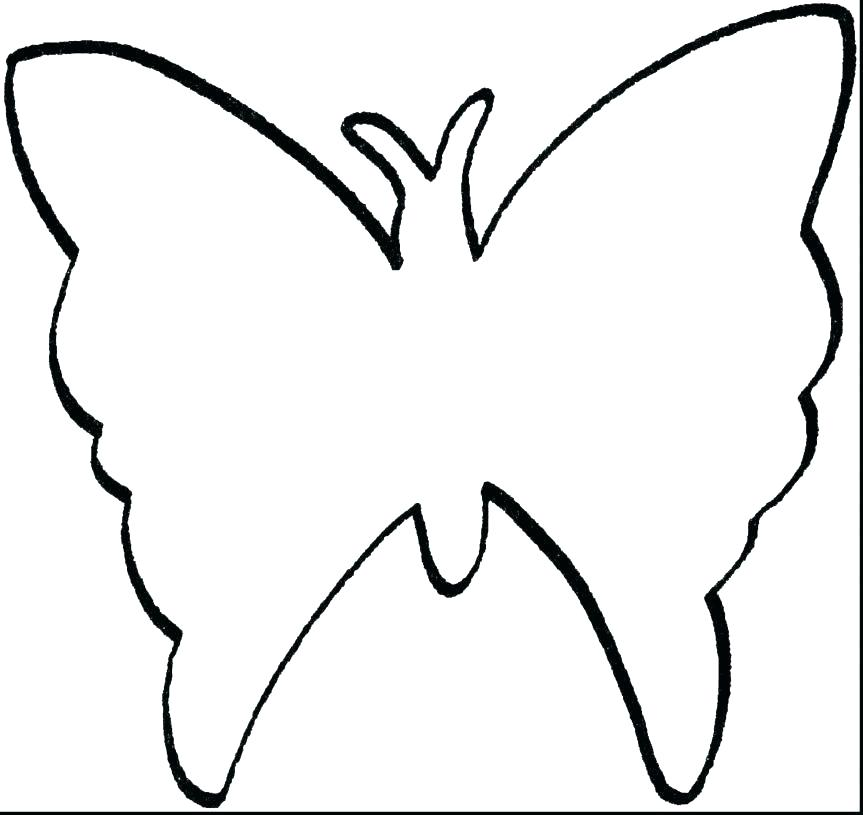 863x815 Outline Butterfly The Transparent Skeleton Of Drawing Used