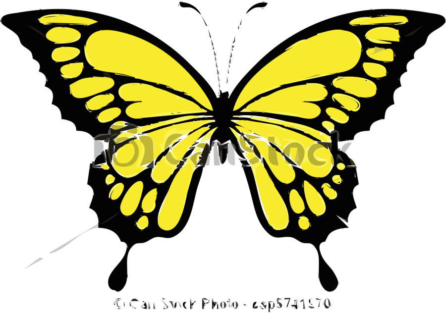 900x632 Butterfly, Drawing, Design, Transparent Png Image Clipart Free