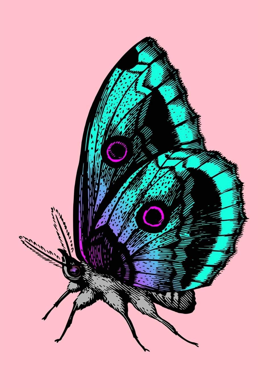 907x1360 Butterfly Sketchbook Butterfly Bordered Sketchbook