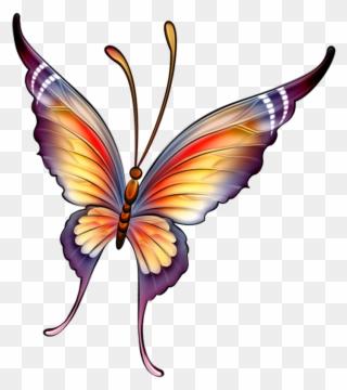 320x360 Butterflies Butterfly Drawing, Butterfly Fairy, Crochet