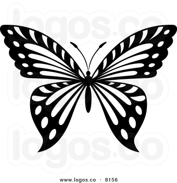 600x620 Butterfly Black And White