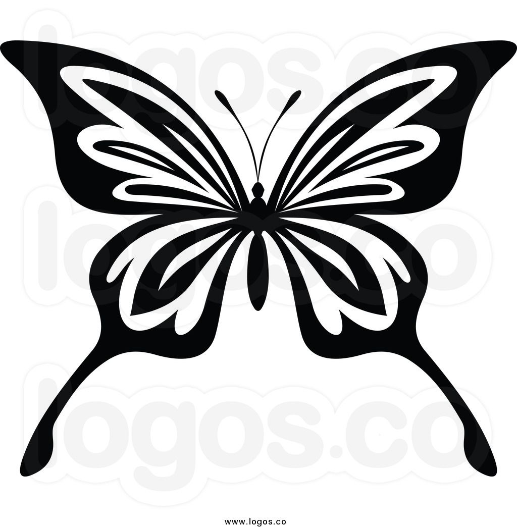 1024x1044 Butterfly Drawings Black And White Of A Black And White