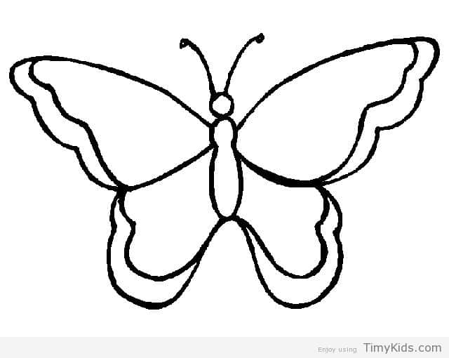 640x510 Cute Butterfly Clipart Black And White Outline