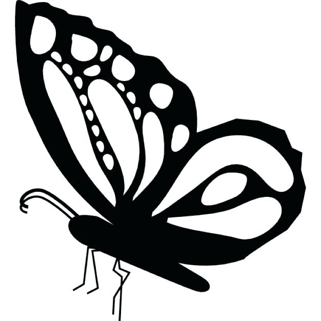 626x626 Simple Butterfly Drawing How To Draw A Simple Butterfly Step